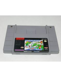 sd507410274_bugs_bunny_rabbit_rampage_super_nintendo_snes_video_game_cart.jpeg